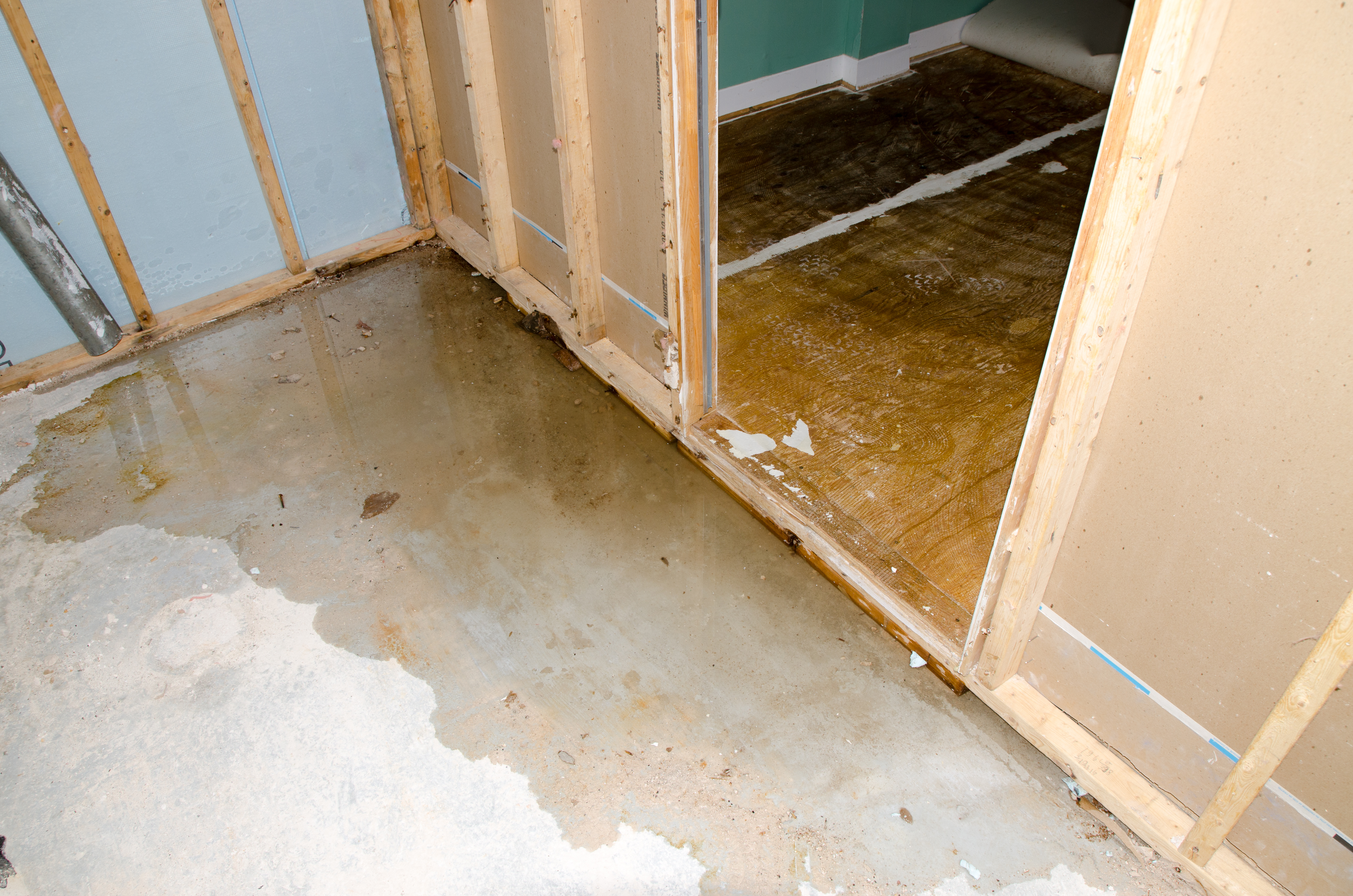 Dealing With Mold In A Home After Hurricane